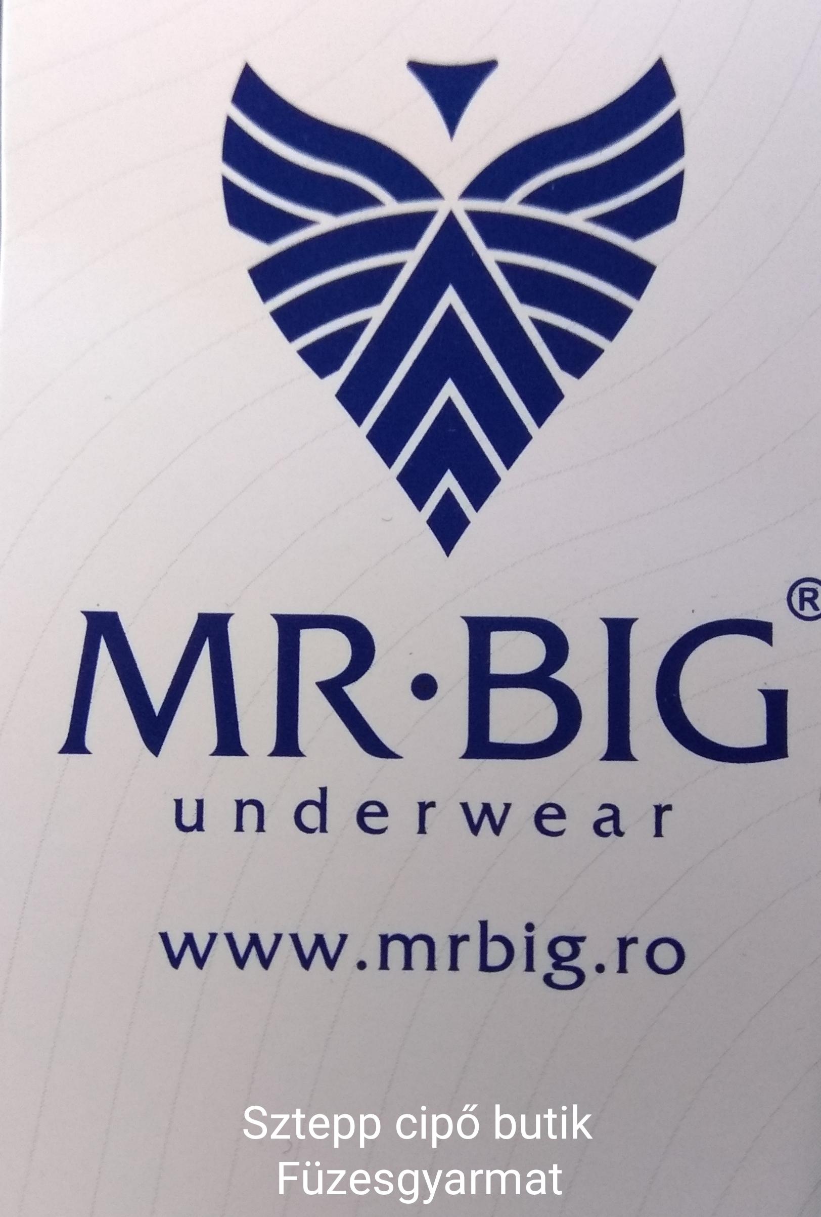 Mr.Big fehérnemű,póló